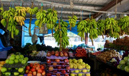 colorful vegetable stand at San Ignacio market